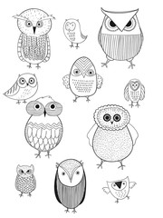 Owl logo set. Beautiful vector set of twelve. Owls hats, sunglasses