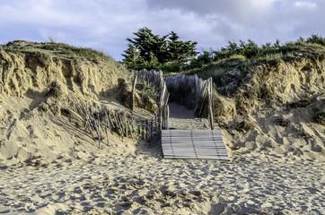 Chelmin dans les dunes