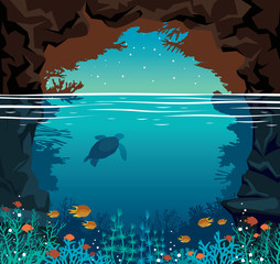 Underwater coral reef, fish, sea, night sky, cave and turtle.