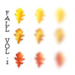 Falling realistic oak leaves set with blured variation, vector illustration