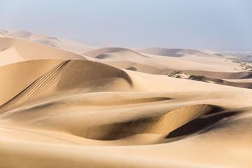 Namib desert, golden sea of sand dunes, Namibia, Africa. Swakopmund