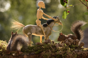 squirrels standing with a horse and skeleton