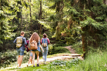 Teenagers with backpacks hiking in forest. Summer vacation. Wall mural