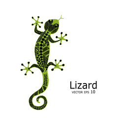 Green lizard sketch, zenart for your design