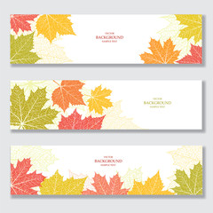 Set of nature banners with autumn leaves