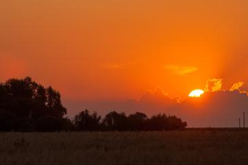 Sunrises Sunsets
