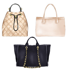 Fashion Illustration - diifferent types of women hand bags