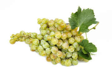 White grape bunch isolated on white background.
