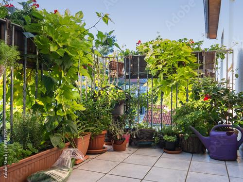 gr ner balkon in der stadt stockfotos und lizenzfreie bilder auf bild 169870031. Black Bedroom Furniture Sets. Home Design Ideas
