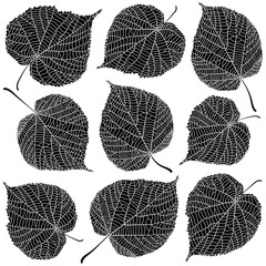 Wall Mural - Linden leaves black and white