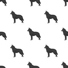The dark Belgian wolf. Belgium single icon in monochrome style vector symbol stock illustration.