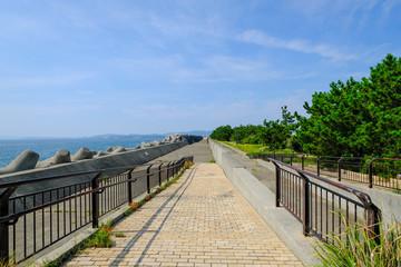 雑賀崎の遊歩道