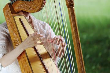 ハープ、アルパ、ラテンハープ、インディアンハープ、中南米、アルピスタ、パラグアイアン・ハープ、パラグアイ、メキシカンハープ、エクアドル、メキシコ、弦、弾く、赤い弦、青い弦、撥弦楽器、民俗楽器、ハープ属、弦楽器、竪琴、共鳴、共鳴体、はじく、叩く、指、優雅、メロディー、音楽、楽器、音、音響、木製、森、森の中、女性、手、指、十勝の森、北海道、帯広、
