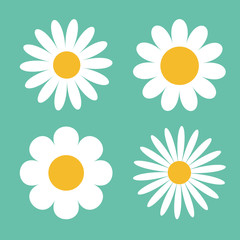 Camomile icon set. White daisy chamomile. Cute round flower plant collection. Love card symbol. Growing concept. Flat design. Green background. Isolated.