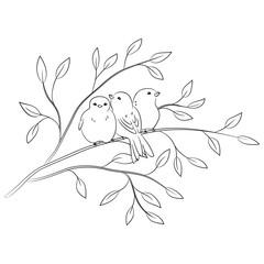 contour vector of birds