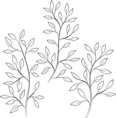 contour vector illustration of tree branch with leaves