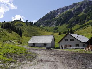 Alpe Almwirtschaft in den Bergen