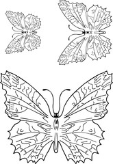 Butterfly Tattoo Designs Package on white