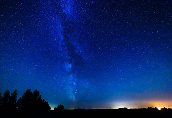 Milky way and stars over the forest.