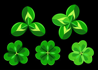 Bright leaves of clover