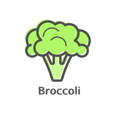 Broccoli color thin line vector icon. Isolated cauliflower vegetable linear style for menu, label, logo. Simple vegetarian food sign.