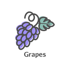 Grapes thin line vector icon. Isolated bunches of grapes linear style for menu, label, logo. Simple vegetarian food sign.