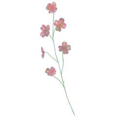 Drawn Watercolor Flower Vector Illustration