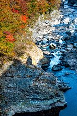 Colored leaves, river and locks, Japan