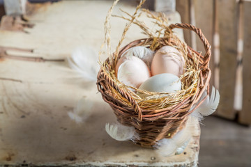 Healthy free range eggs from the countryside