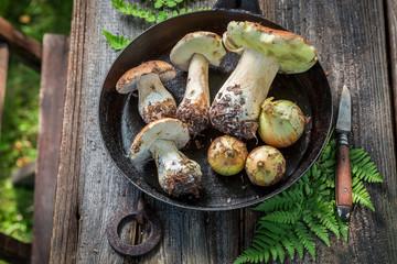 Tasty boletus and onion on the pan