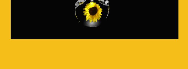 Header mit Sonnenblume in einem Tropfen auf schwarz-gelben Hintergrund