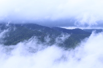 Forested Mountains Covered Under the Clouds and Heavy Fog