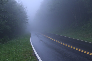 Misty Misterious Road in the Dark Woods of America