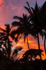 North shore Oahu colorful tropical Sunrise