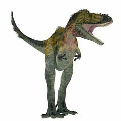 Alioramus Dinosaur on White - Alioramus was a carnivorous theropod dinosaur that lived in Asia in the Cretaceous Period.