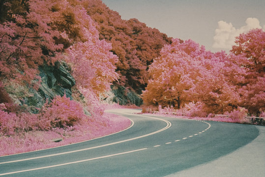 Winding Road On Skyline Drive In Shenandoah National Park Infrared