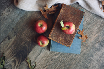Autumn still life with apples, warm blanket, books and leaves over rustic wood background. Horizontal, directly above.