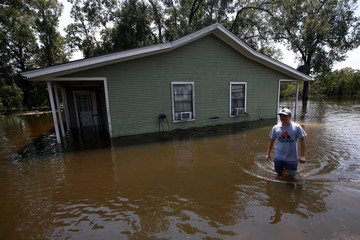 A youth wades through water at a farm after Tropical Storm Harvey in Orange