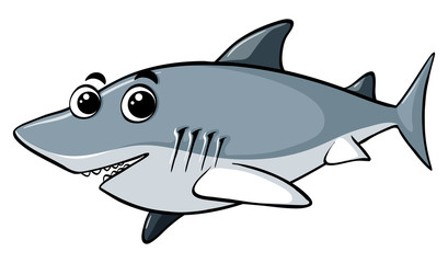 Great white shark with happy face