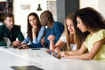 Multi-ethnic group of young people studying with laptop computer