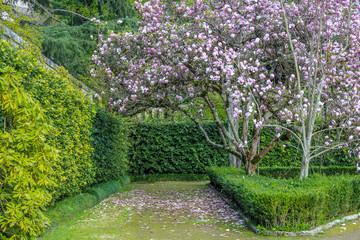 Photo sur Plexiglas Jardin Botanical Garden, Coimbra, Portugal