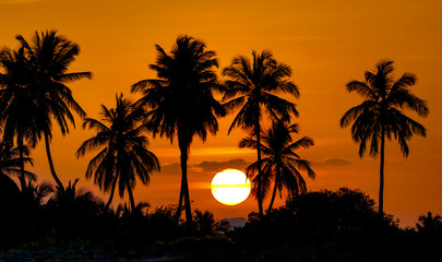 Beautiful Sunset View amidst mountains and silhouette of coconut trees