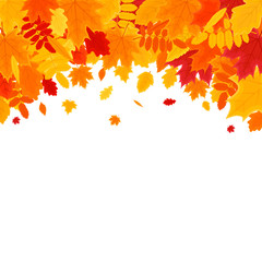 Autumn Vector Background with Foliage. Vector Illustration Banner.