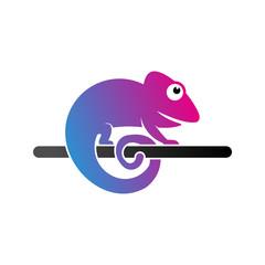 Chameleon Logo Template Design