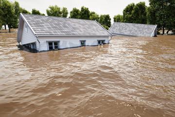 3d rendering. flooding houses