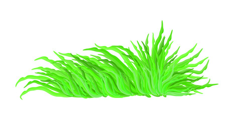 algae vector symbol icon design. Beautiful illustration isolated on white background