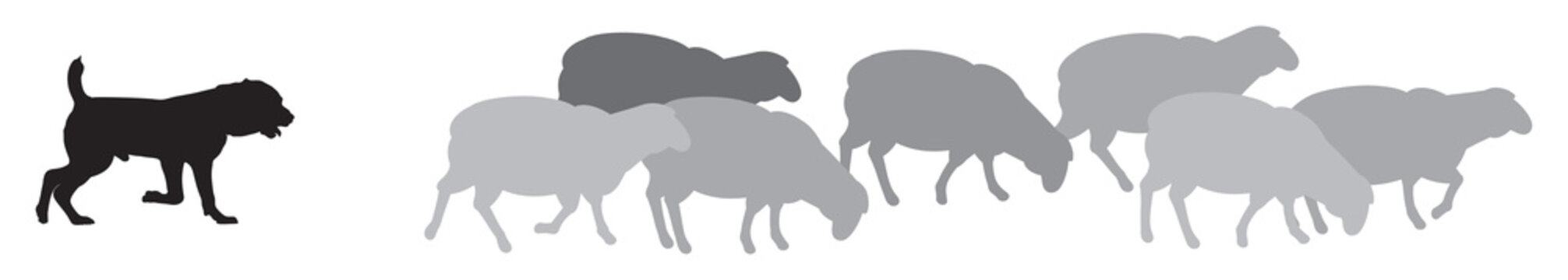 Sheep with Shepherd Dog Silhouettes, a guard sheepdog protects a flock of sheep from predators, livestock guardian dog (LGD), a type of pastoral dog bred vector illustration