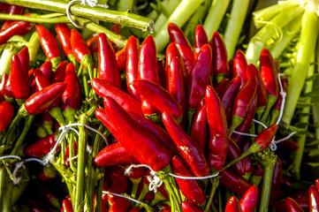 Chilischoten am Markt