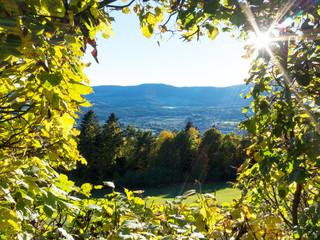 Ausblick in das Pöllauer Tal, Steiermark