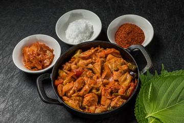 韓国料理タッカルビ Dak galbi(Korean chicken grilled dish)